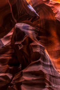 Cougar Antilope Canyon USA Johannes Frank
