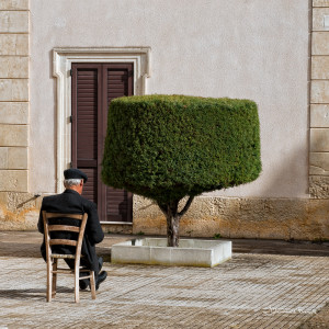 man sitting watching tree Johannes Frank