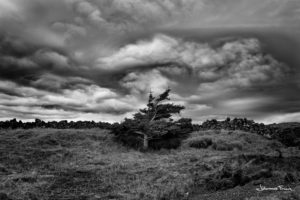 Stormy clouds Johannes Frank