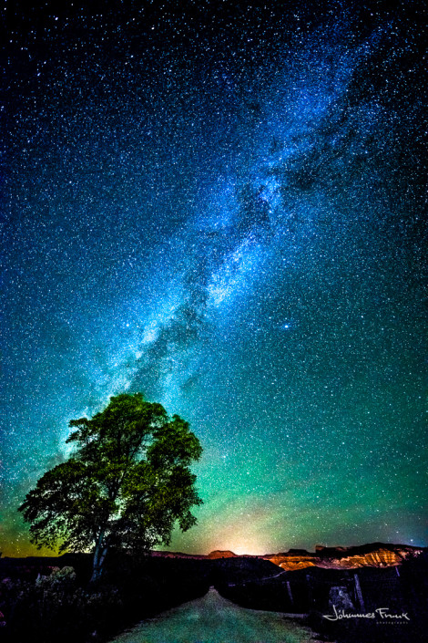 Milky Way and tree Johannes Frank