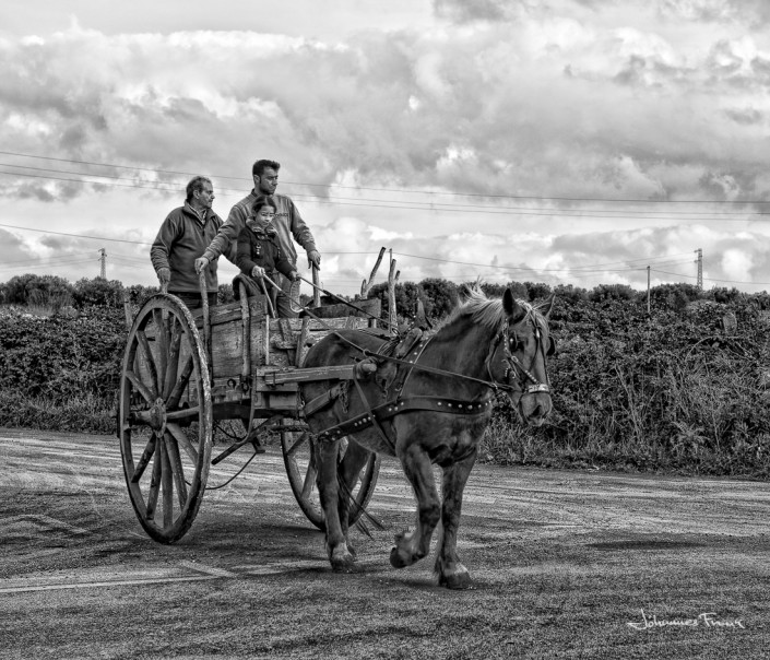 People in a horse wagoon Johannes Frank