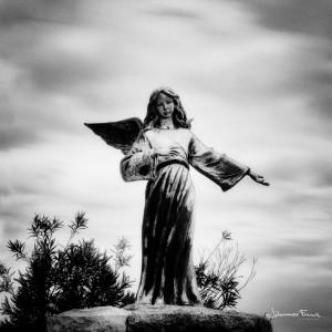 Santa maria de Luca Johannes Frank