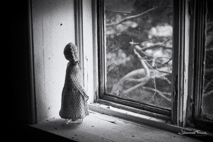 A Doll in a windowsill johannes frank